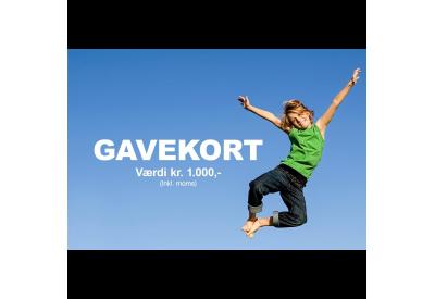 Gavekort Trampolincenter.dk 1000,- kr